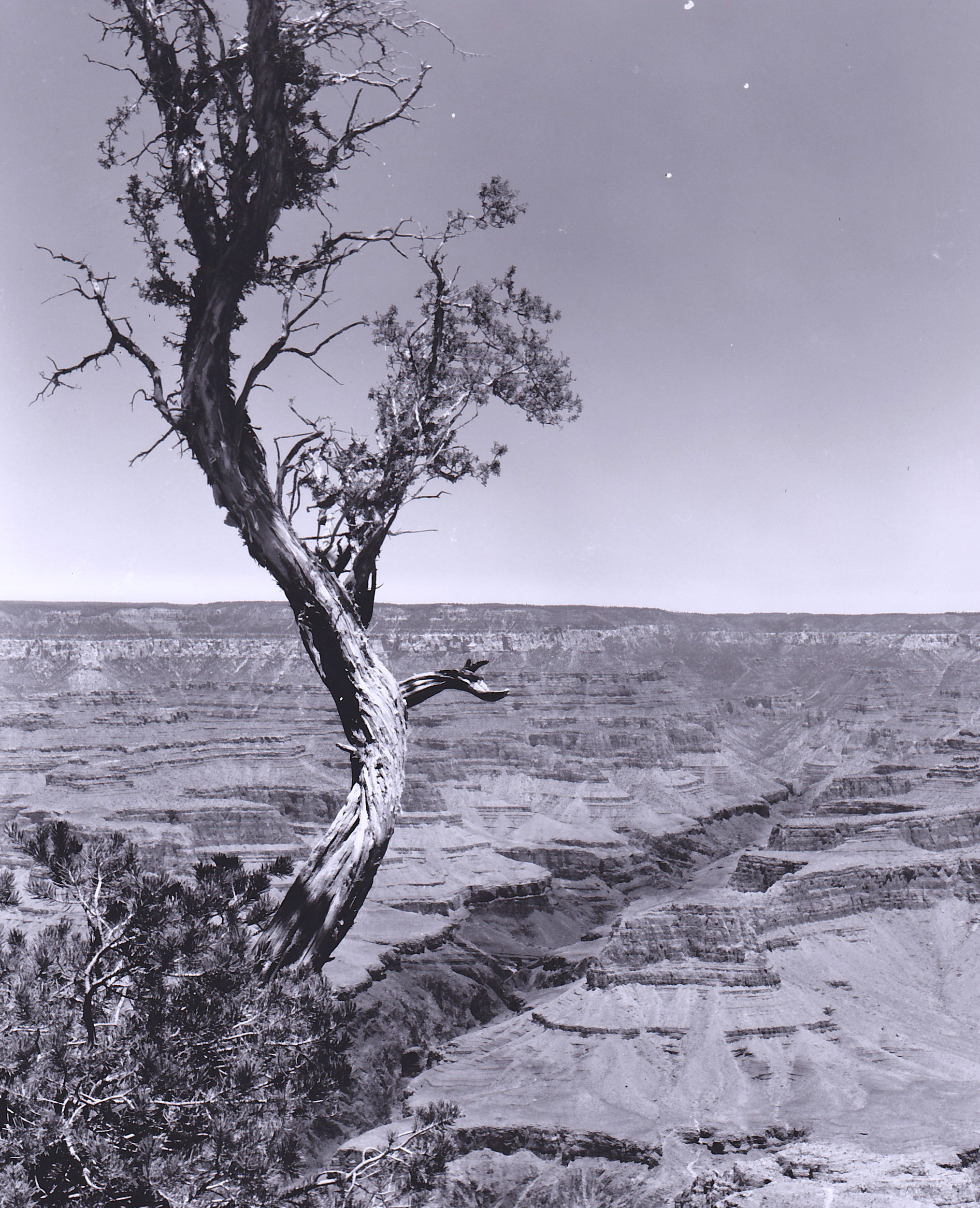 grand canyon overlook photograph